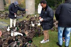 ANC Men's Group: Visit to Bowring Park